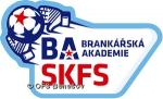 baskfs logo