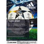 lionsport ofs bn